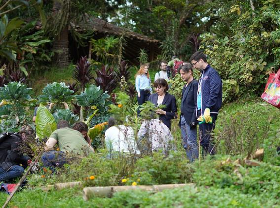 Climate Labs Genoa Garden.JPG