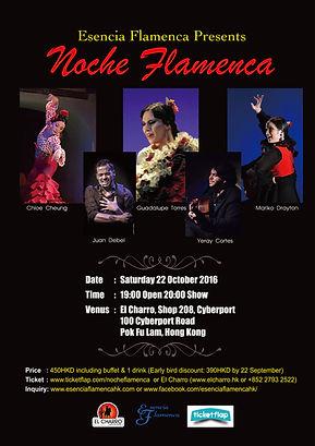Flamenco Performance Noche Flamenca 2016