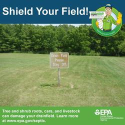 sheild_your_field_2018_-_2