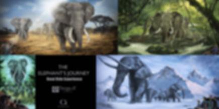 omniride elephant.jpg