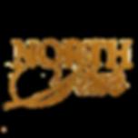 north star logo.png