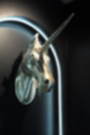 Unicorn Tears (4).JPG