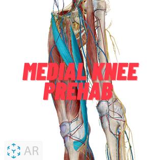 Medial Knee Prehab