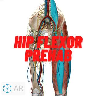 Hip Flexor Prehab.png