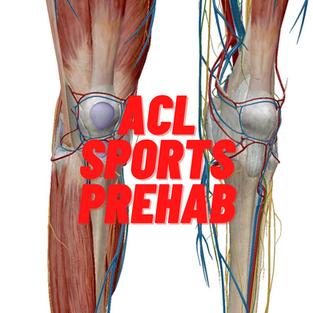 ACL Sports Prehab