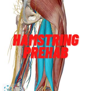 Hamstring Prehab