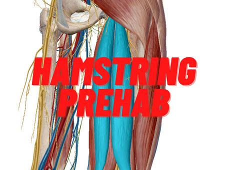 Hamstring Prehab Training