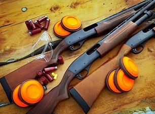 guns-vr7e5031.jpg