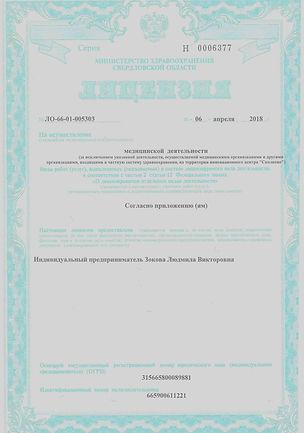 Лицензия11.jpg