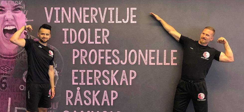 Elo og HJ VA Profil.JPG