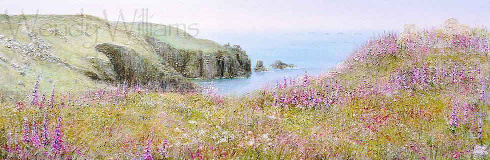 Land's End and Foxgloves