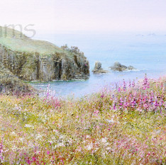 lands end +foxgloves watermarked.jpg