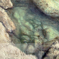 123 Rockpool2015 edit1+watermark detail.