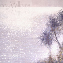summer sparkle through the palms,waterma