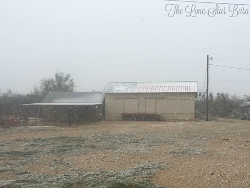 Snow On The X7Bar Ranch