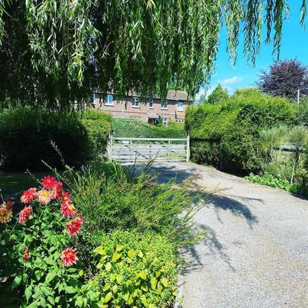 Saddlers Garden 4.jpg