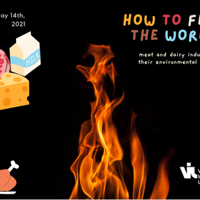 Lunch2B n°10: how to feed the world, meat and diary industries