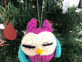 Purple Owl Eyes Closed