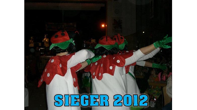 PMB 2012.png