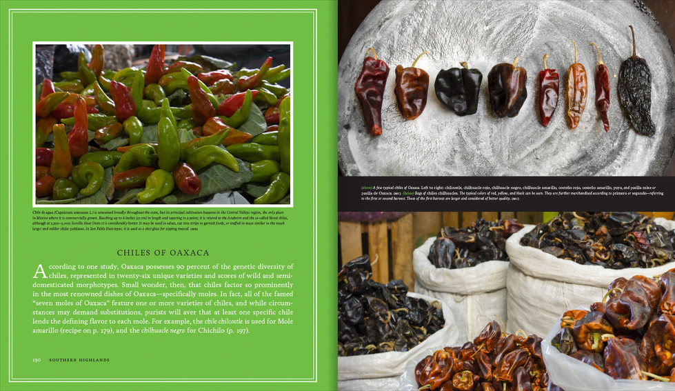 Sterling_Mercados_Pages6.jpg