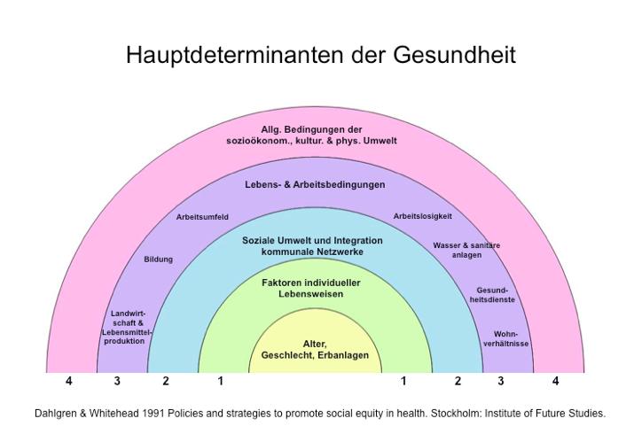 Grafik Hautdeterminaten der Gesundheit