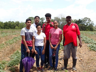 iLBC Farmer Spotlight: Ramdeo Boondo