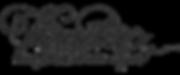logo NB Vanitas.png