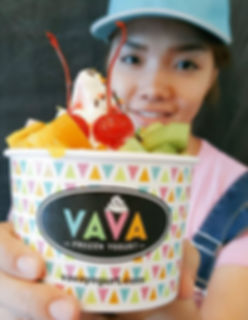 VAVA Frozen Yogurt Franchise