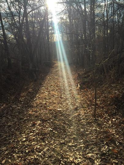 healing light.jpg