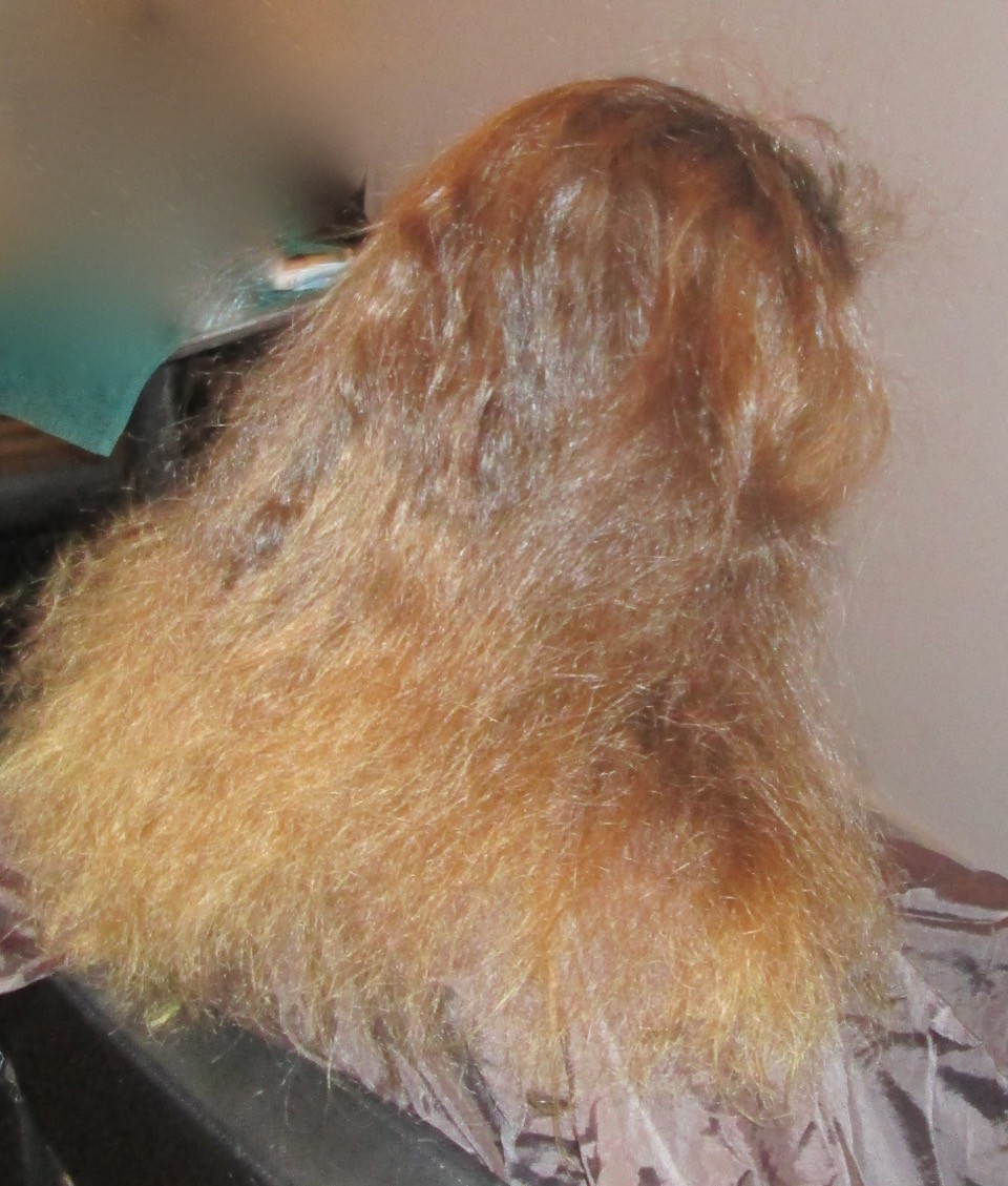 Frizzy hair before