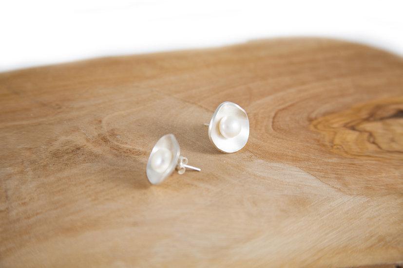 White pearl shells