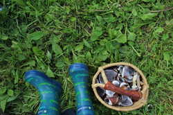Growing-Mushrooms-with-Kids-Boots-and-Ba