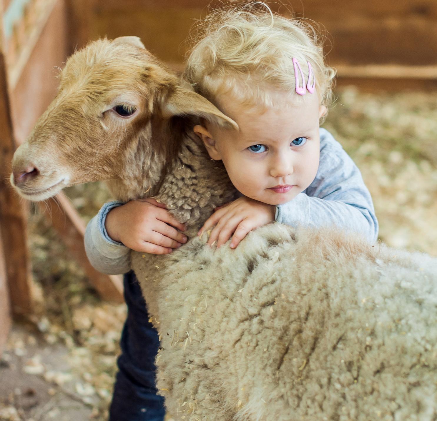 -NEW-TODDLER FARM MORNINGS (2) copy