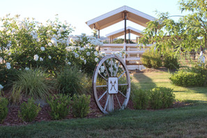 New Farm Gardens