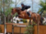 apiro-jump5-jpg-w300h210_1_orig (1).jpg