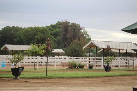 Farm 21.jpg