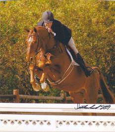 Horse Shows 5.jpg