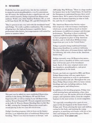 Plaid Horse CP 3.jpg