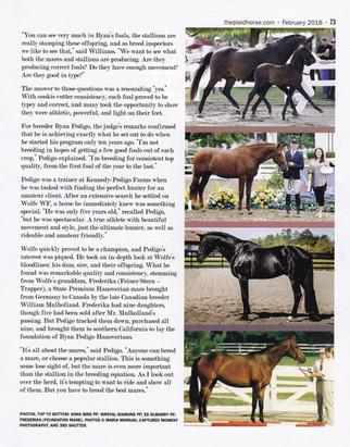 Plaid Horse CP 2.jpg