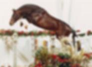 Corlando jumping .jpg