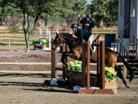 Celebrating 2019 Horse Show Success!