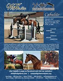 Cabalito Flyer New-1.jpg