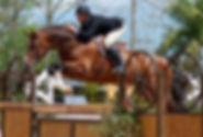 apiro-jump5.jpg