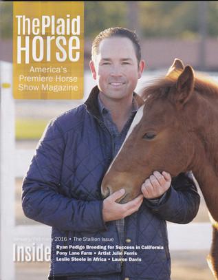 Plaid Horse Cover