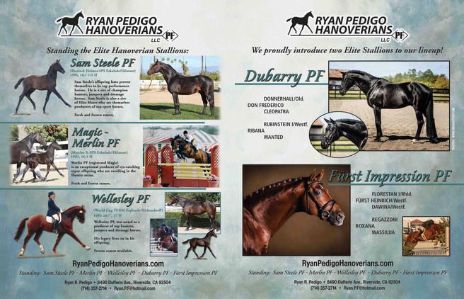 PF Stallion Ad Page