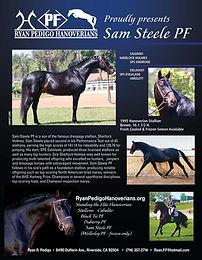 sam steele stallion ad 5 10.jpg