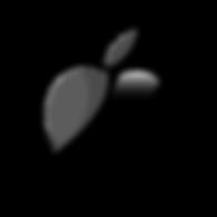 apple_logo-512.png