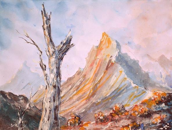 Patagonia mountain
