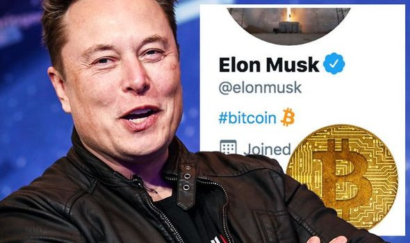 Bitcoin Price Boosts By 20% From The World's Richest Man, Elon Musk.