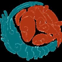 Los Camarones Alfeidos (Crustacea: Decapoda: Caridea) de Yucatán y su estado de conocimiento en la cuenca del Golfo de Mexico